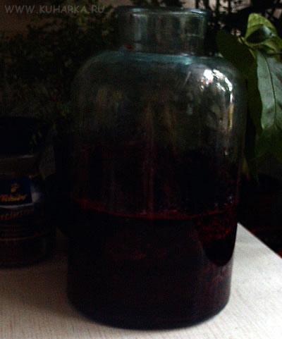 Черноплодная рябина рецепты фото