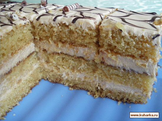Торт семистаканник фото
