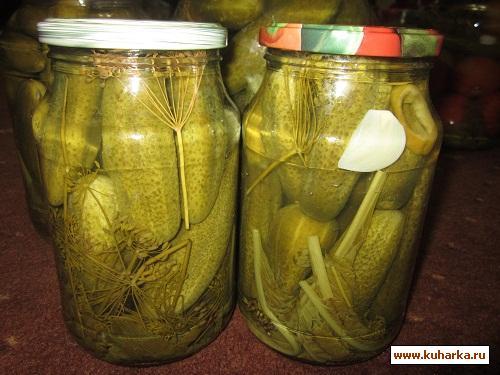 Рецепт Острые огурчики на зиму