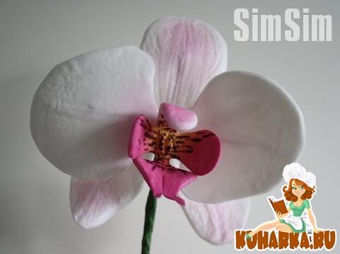 Рецепт Орхидея (цветочная паста)