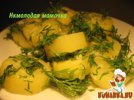 Рецепт Кабачки по-алжирски.
