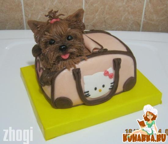 Торт собачка с фото