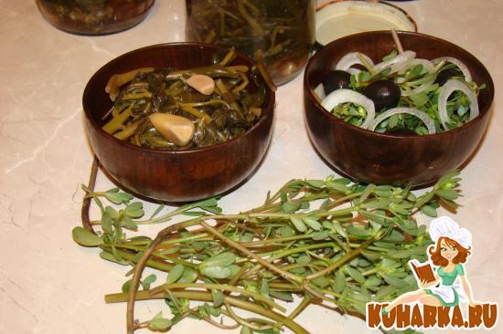 Рецепт Простейший салат из молодых побегов портулака